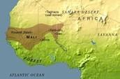 The kingdom of Mali.