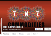 Online Shopping with TNT Commodities