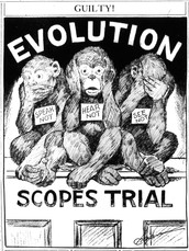 7.  Evolution and the Scopes Trial
