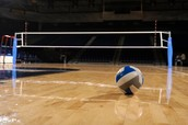 Volleyball and the court.