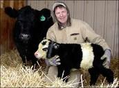 person has panda as pet