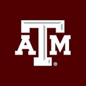 A&M University