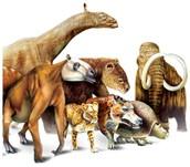 Mega-mammals