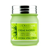 L' Occitane Angelica Hydra Vital Cream - 50ml