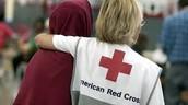 The Red Cross Sends Volunteers.