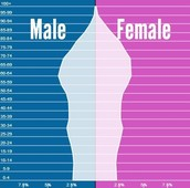 Greece's Population Pyramid (2040)