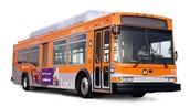 4 door bus