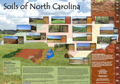 Soil of NC