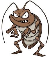 D-Xterminant's Cockroach Paste.