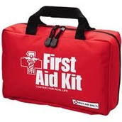 Why Brewster would bring a first aid kit