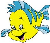 this is flounder!!!!