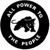 What were the Black Panthers?