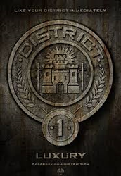 district 1 the rich