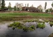 The ash pool