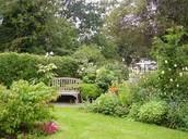 how good your garden looks when you go green