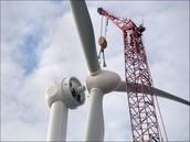 Wind turbine blade rotor