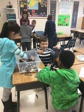 Classroom Themes and Projects