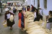 Ecuador's Economy's Problems