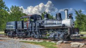 The first kinds of locomotives