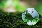Why do we need the Earth Day in your opinion ?