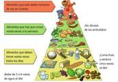 La proporción de los alimentos