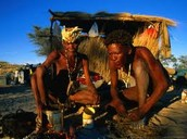 San Bushmen making a meal!