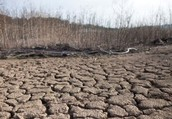 What Causes Drought and is there a Solution?