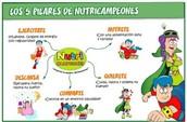 LOS 5 PILARES DE NUTRICAMPEONES