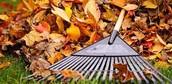 Fall raking