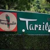 Tarzilandia- El restaurante