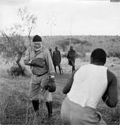 Hemingway Boxing