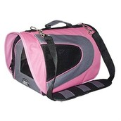 Pet Carriers..get them there safely!