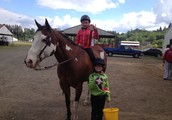 Keep your horses Tuned up or start your training at these fun fall schooling shows! October 12th and November 9th
