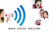 Voice Calls