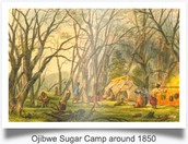 Maple sugar camp