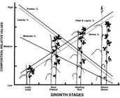 Growth Stages for harvesting