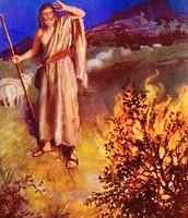 משה אל מול הסנה הבוער (תמונה 3)
