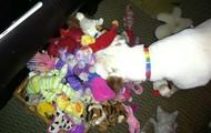 I love toys!