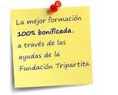 2008 -  Actualidad // Técnico de Formación de Demanda (Oficina Técnica)