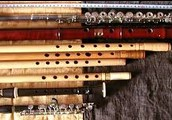 Why are Woodwinds Important?