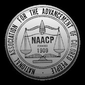 Civil Rights Activist Groups
