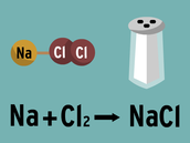 Components of Chemical Equations