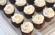 Chocolate cupcakes with cream frosting