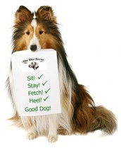 Dog Training - How Online Classes Can Help