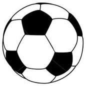Our Shop sells the best soccer supplies in Madison!