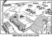 The driving age is too low