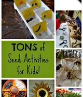 Tons of Seeds Activities