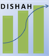Dishah Strategic Solutions Private Limited