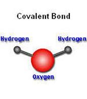 Covalent properties