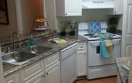 Beautiful Open Kitchen w/ Updated Appliances